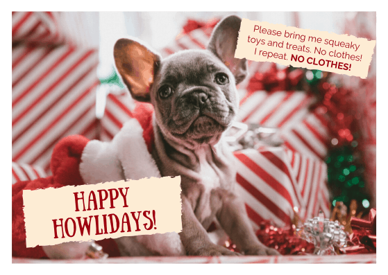 christmas card with a funny dog saying