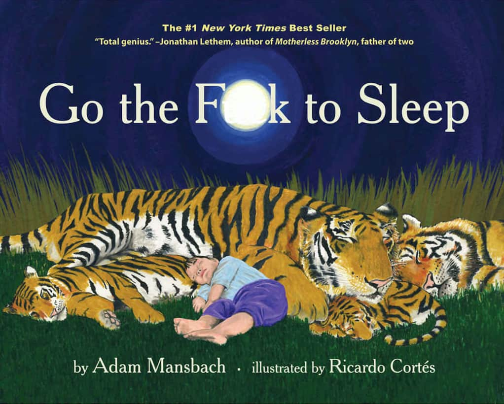 Go To Sleep Book - Unique first Fathers Day Gift For New Dad