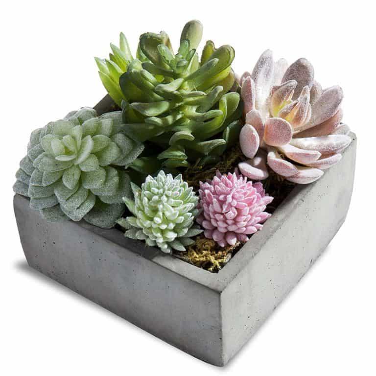 MyGift Artificial Succulent