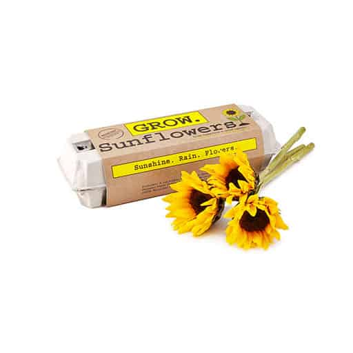 good things for mothers day:Sunflower Garden Grow Kit