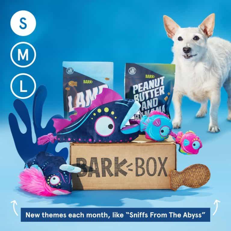 barkbox subscription - gift idea for dog moms