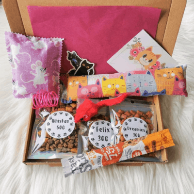 Cat Toy and Treat Gift Box