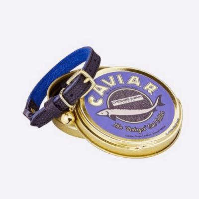 Cheshire & Wain Caviar Cat Collar