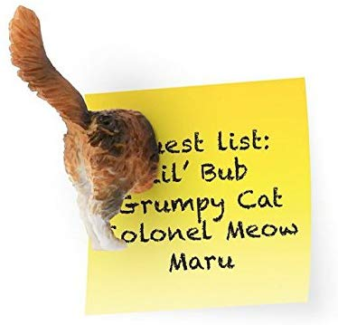 cat stuff for cat lovers - cat butt magnets