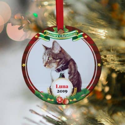 gifts for cat lovers - personalized ornament