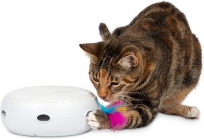 unique gifts cats - electronic nighttime batteries
