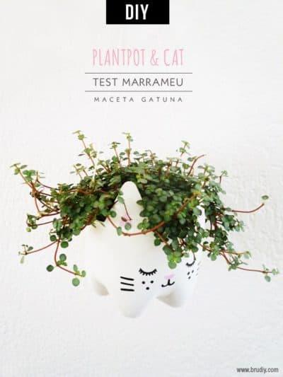 gifts for cat lovers - maceta gatuna