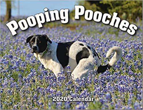 pooches white elephant calendar