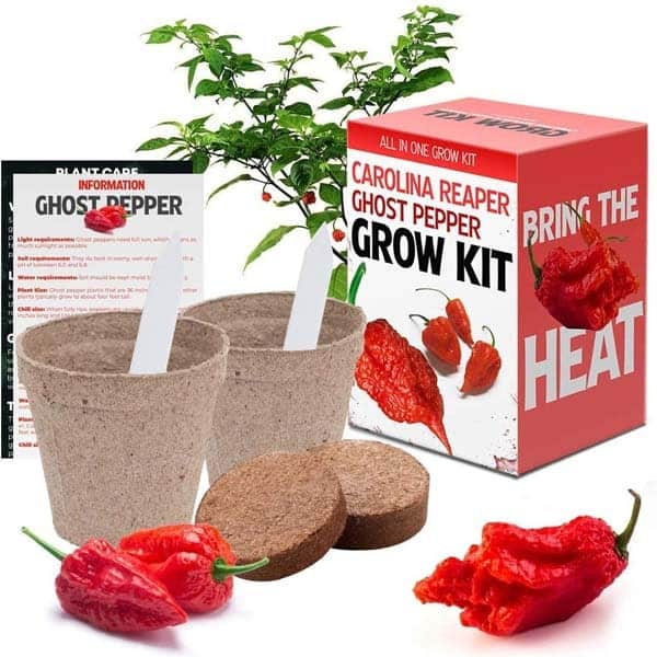 best retirement gifts for men: Chili Grow Kit