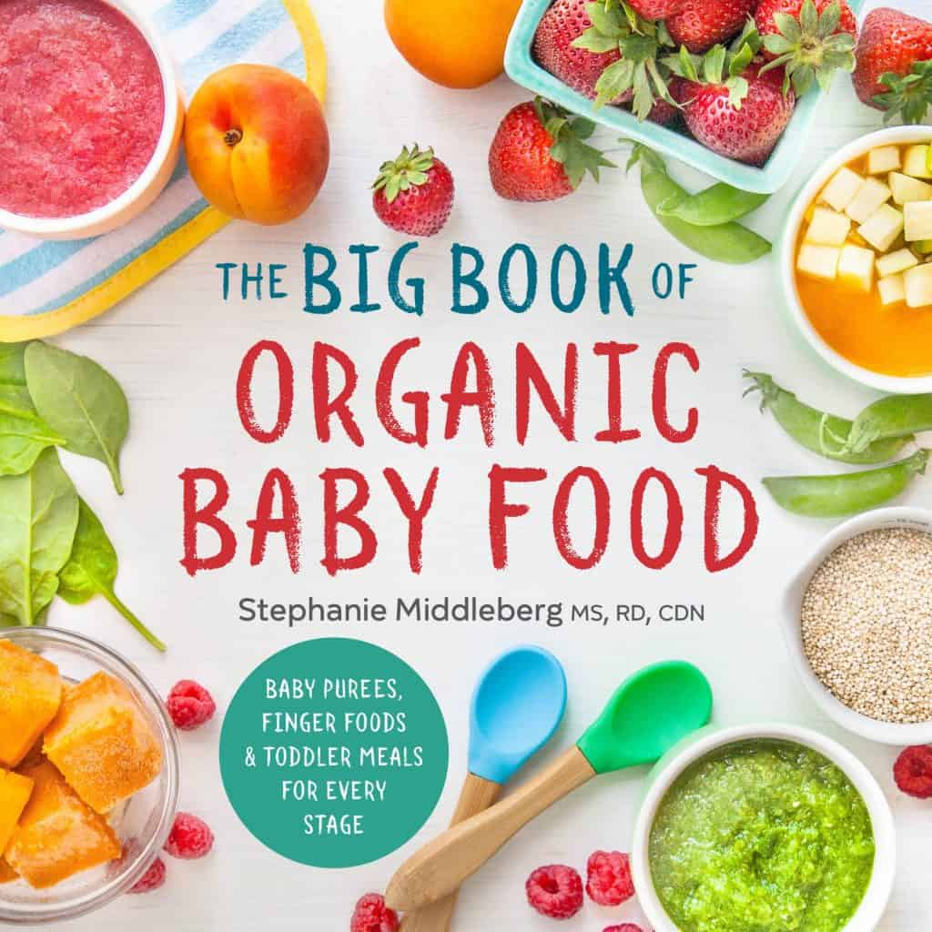 gifts for new moms: big book of organic baby food