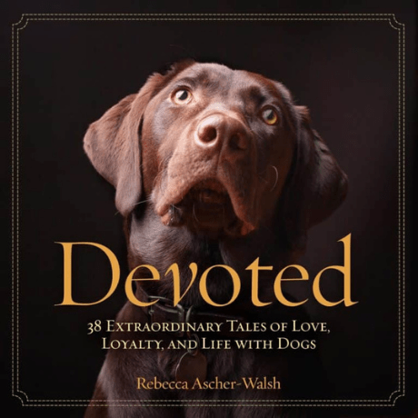 Devoted: 38 Extraordinary Tales of Love, Loyalty, and Life With Dogs - dog mom gift
