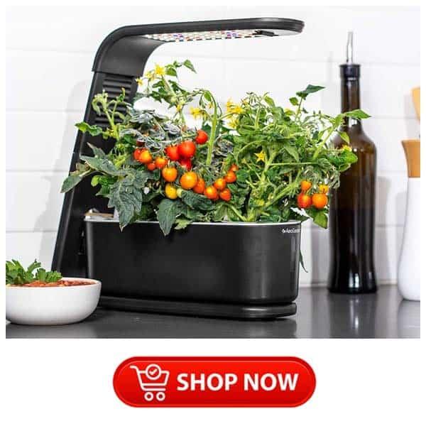 kitchen gift ideas: aerogarden harvest elite