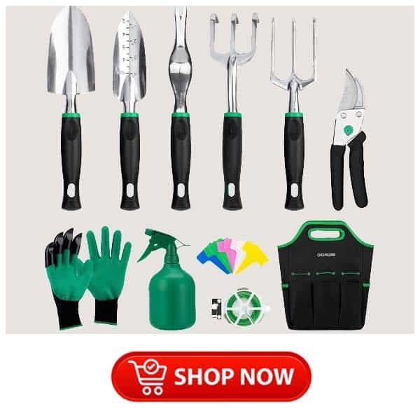 christmas gifts for older parents: Garden Tools Set
