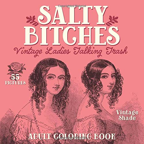 funny birthday gifts for her: salty bitches adult coloring book