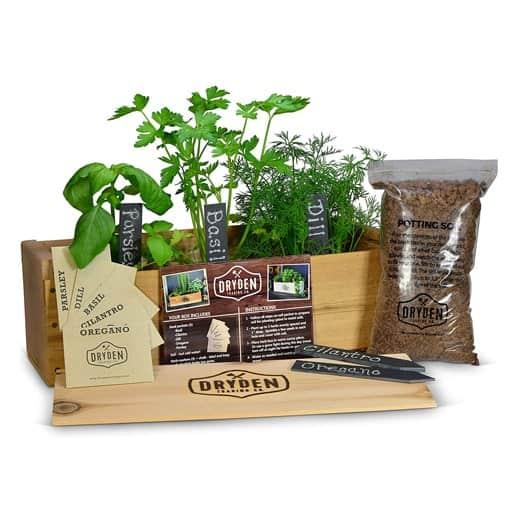 Herb Garden Kit - present for sister in law