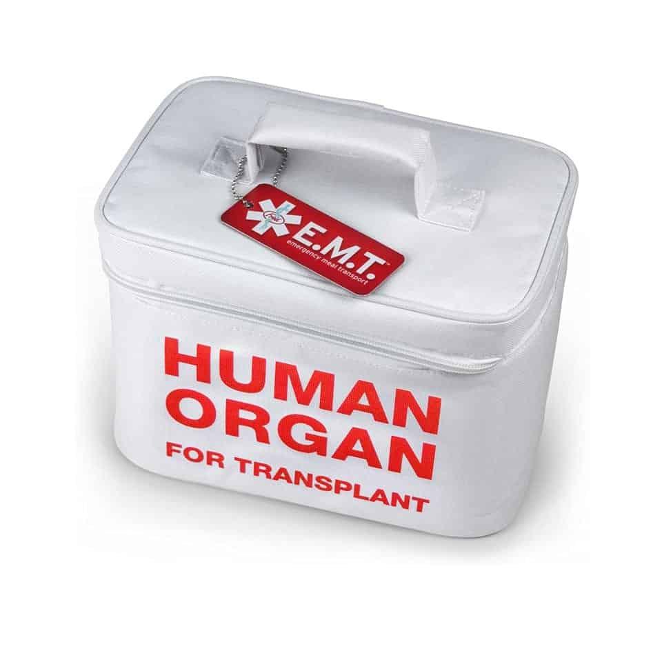 Human Organ Lunch Box - graduation gift for doctor