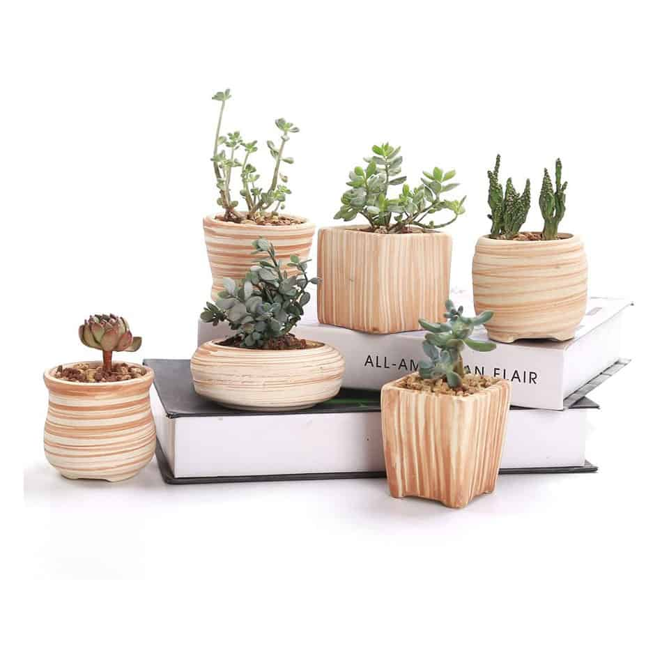 Succulent Plant Pot Set - mothers day presents from daughter