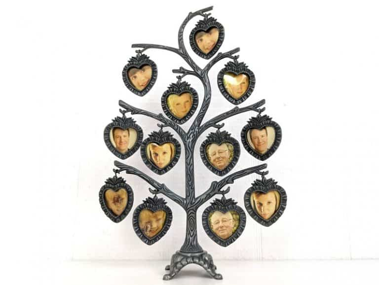 Family Tree Pictures Frames