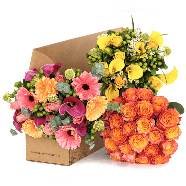 flower is popular gifts for her on all occasions.
