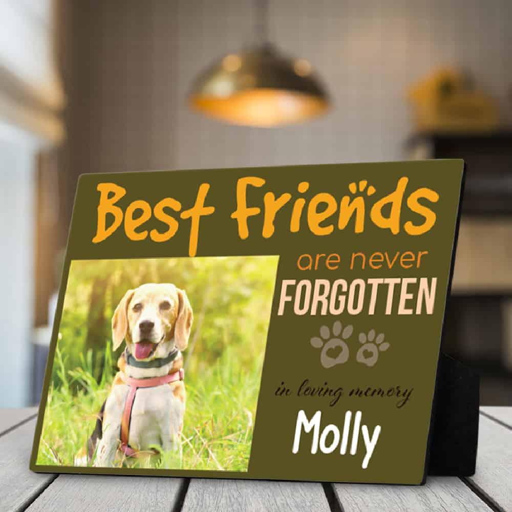 Best Friend Photo Desktop Plaque