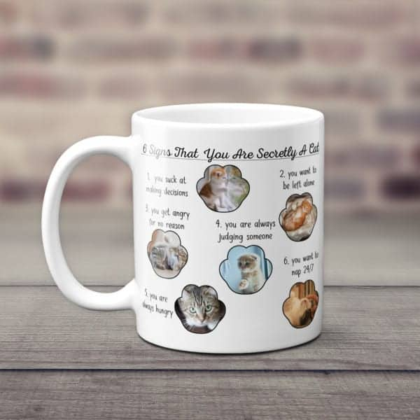 christmas stuff for cat lovers