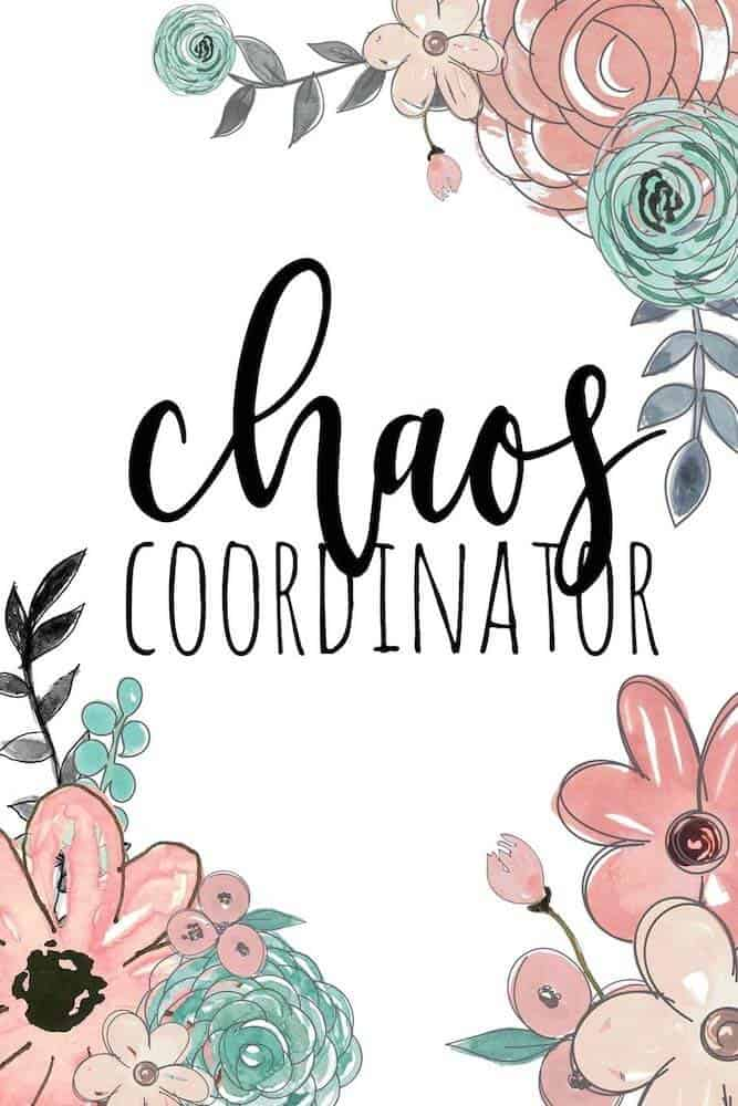 chaos coordinator notebook for lady boss