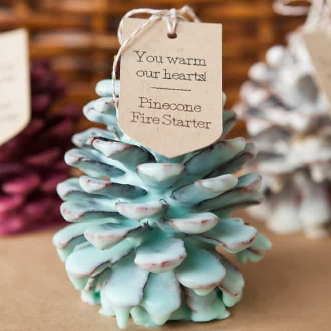 DIY Christmas Gifts - Pinecone Fire Starters