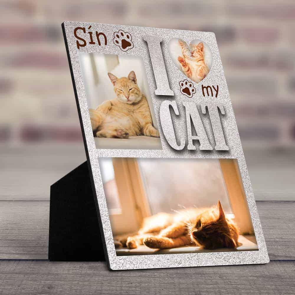 photo desktop plaque gift for female bosses that like cats