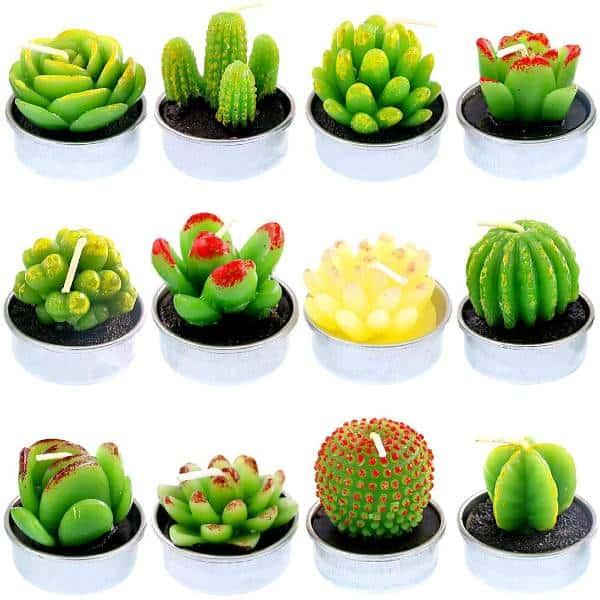 Succulent Tea Lights 21st Birthday Gift Ideas